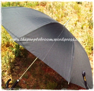 parasol-003