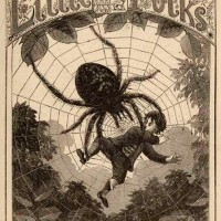 Spiders in Literature, Mythology and Witchcraft