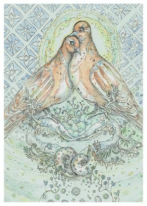 shells02-dove